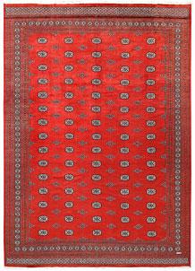 Tomato Bokhara 10' 2 x 14' 4 - No. 59613