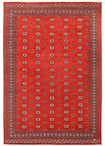 Orange Red Bokhara 10' 2 x 14' 10 - No. 59616
