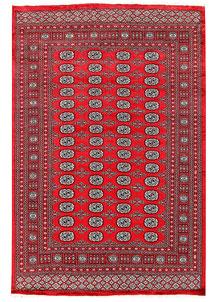 Red Bokhara 6' 1 x 9' 2 - No. 60119