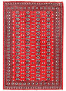 Red Bokhara 6' 2 x 9' 1 - No. 60120