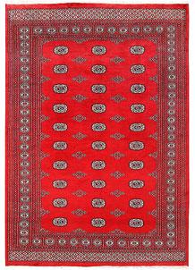 Red Bokhara 6' 2 x 9' 1 - No. 60135