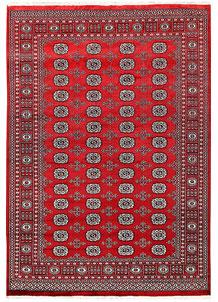Firebrick Bokhara 5' 8 x 8' 1 - No. 60492