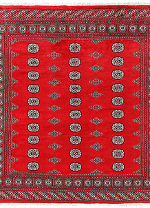 Red Bokhara 6' 7 x 7' 1 - No. 60802