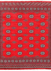 Red Bokhara 6' 7 x 6' 11 - No. 60809