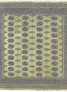 Olive Bokhara 6' 8 x 6' 10 - No. 60861